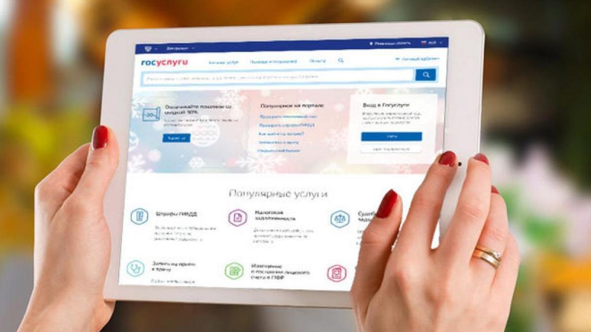 Люди, которые имеют доступ к системе, могут получать государственные услуги непосредственно через сам сайт